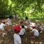 Investigando en el Jardín Botánico
