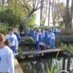 Recorriendo el Jardín Japonés
