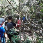 Explorando el monte nativo