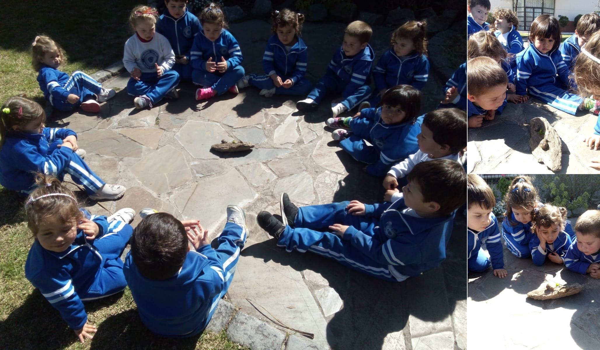 ¡Encontramos caracoles!
